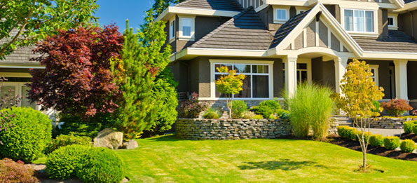 Lawn Care Houston Landscaping Outdoor lighting
