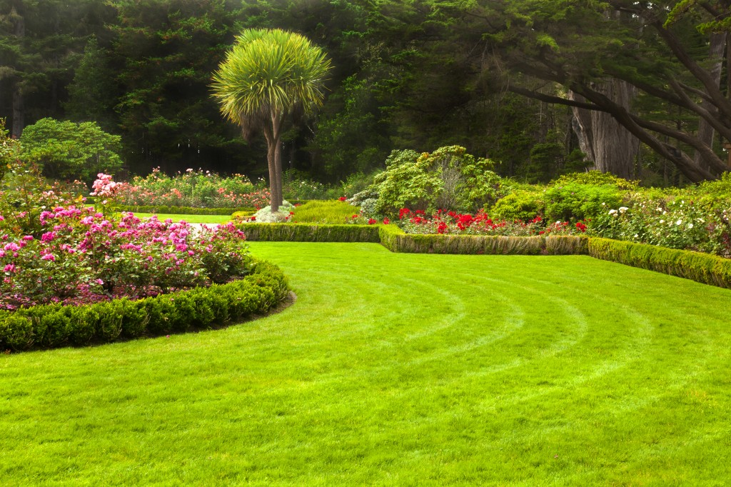 Houston lawn care landscape design company total lawn care for Gardening and landscaping services